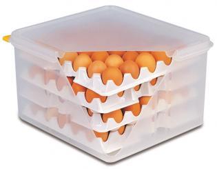 10 trays